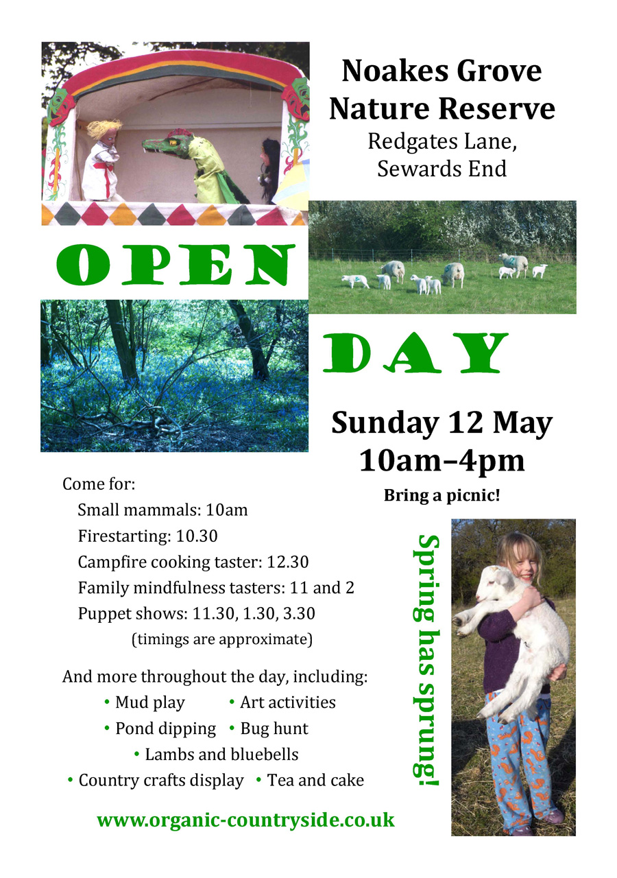 Open Day May 12th
